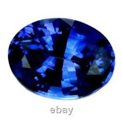 Certified Natural Ceylon Cornflower Blue Sapphire VVS 0.36ct Sri Lanka Oval