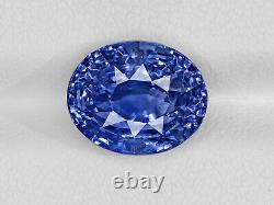 GRS Certified SRI LANKA Blue Sapphire 8.28 Cts Natural Untreated Oval