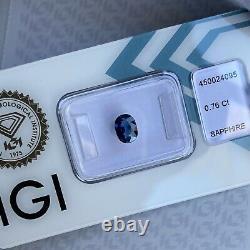 Natural DEEP Blue UNTREATED Sapphire IGI CERTIFIED Oval Cut Unheated Blister Gem